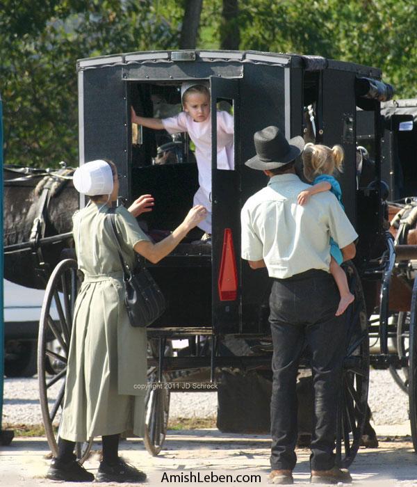 Amish-Horse-Buggy-Holmes-County-Ohio