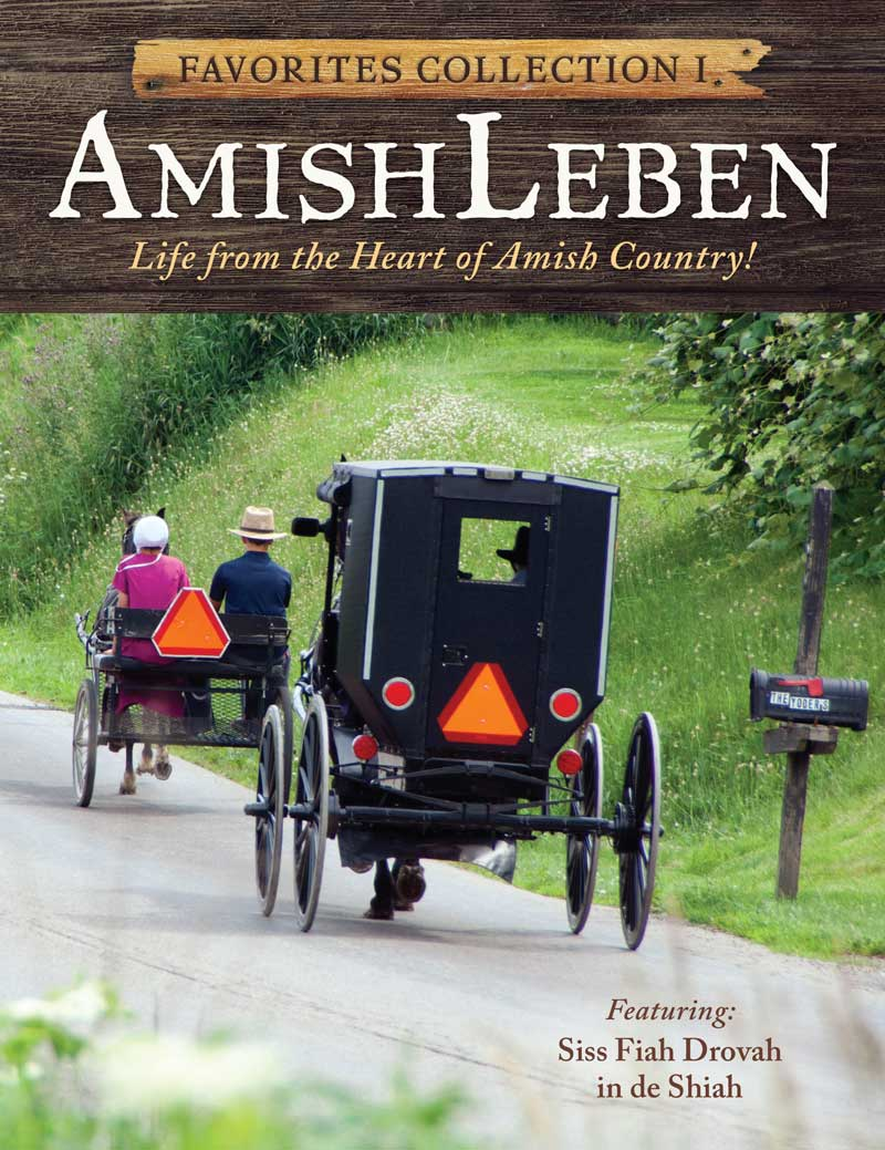 Amish Leben Favorites Collection