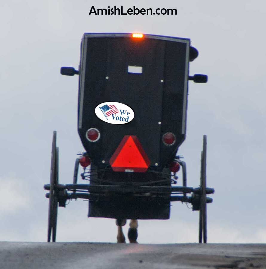 Amish Super PAC - Plain Voters Project