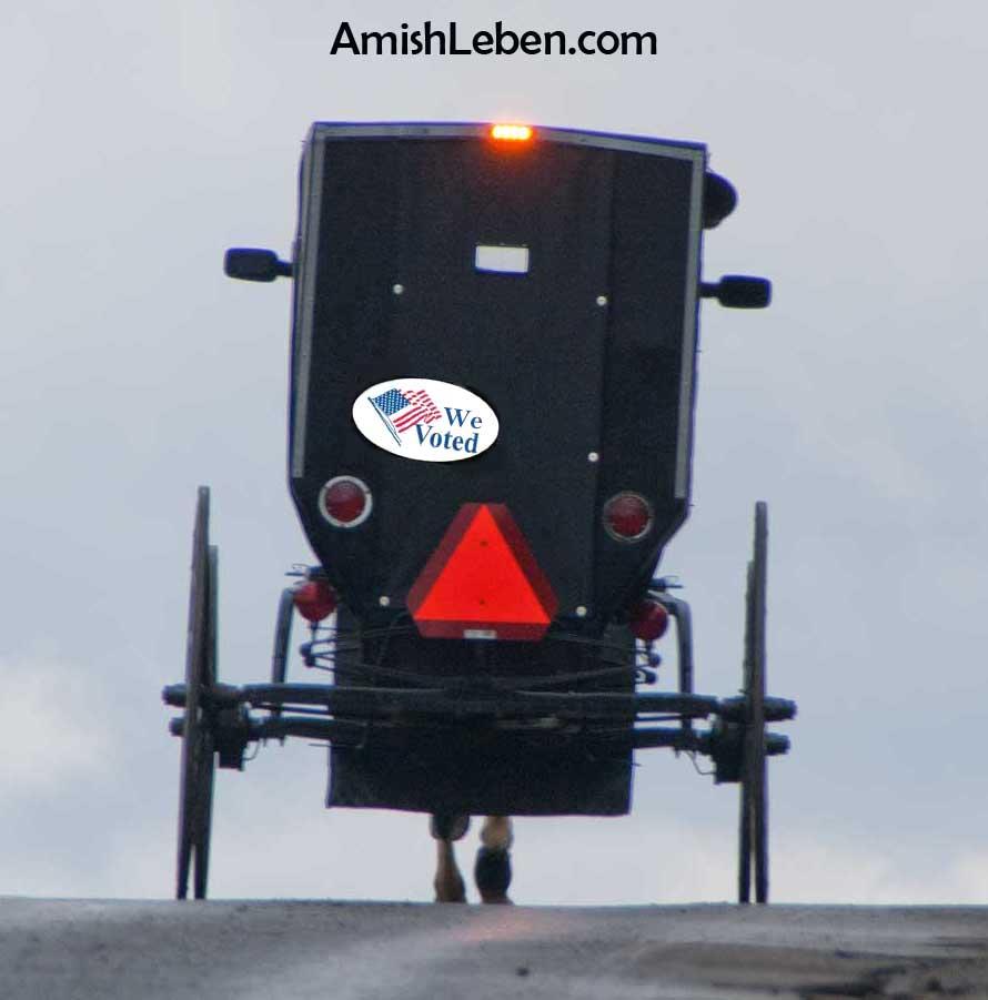 Amish Super PAC - Plain Voters Project