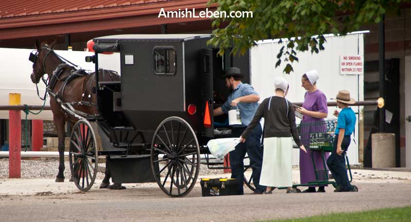 An Amish Family with their horse and buggy.