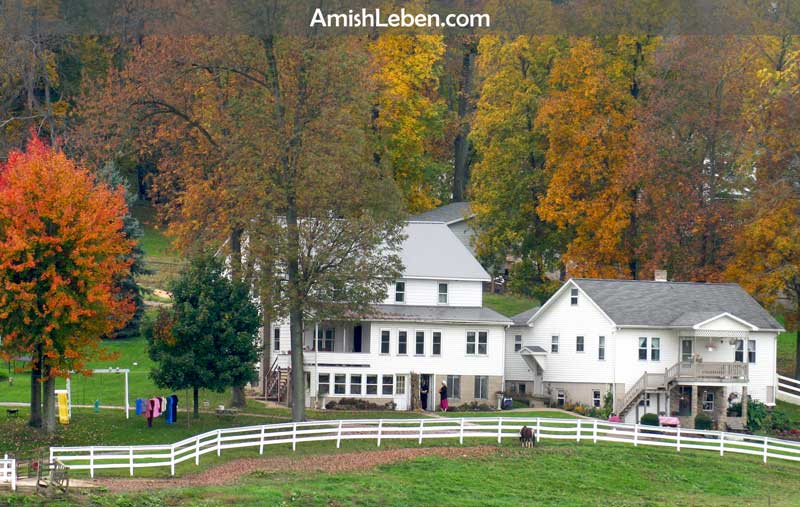 A multi-generational Amish homestead